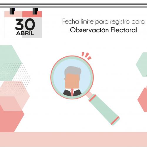 Límete Observación electoral